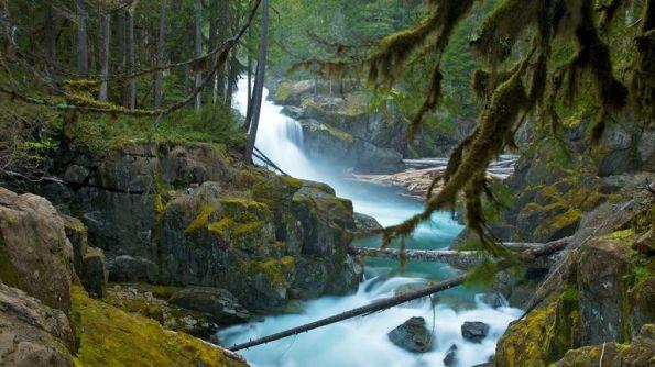 Mount-Rainier-National-Park-20891